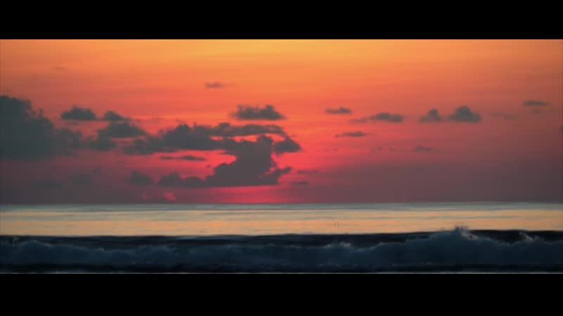 свадьба на Мальдивах видеограф фотограф видеосъемка love story свадебное путешествие
