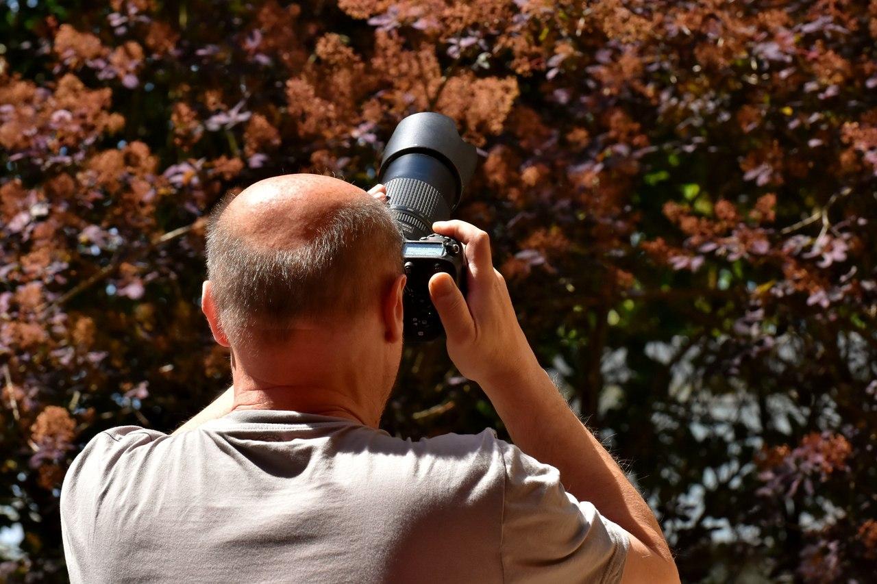 как стать фотографом и начать зарабатывать листы