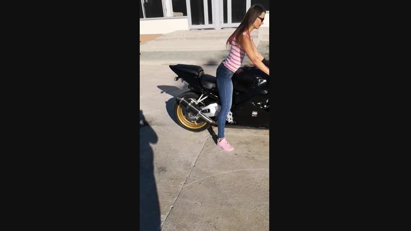 Honda CBR954RR и я