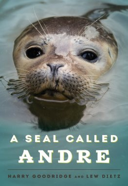 Book cover Seal Called Andre, A - Harry Goodridge & Lew Dietz