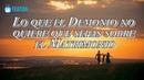 Lo que el Demonio no quiere que sepas sobre el Matrimonio y la Familia