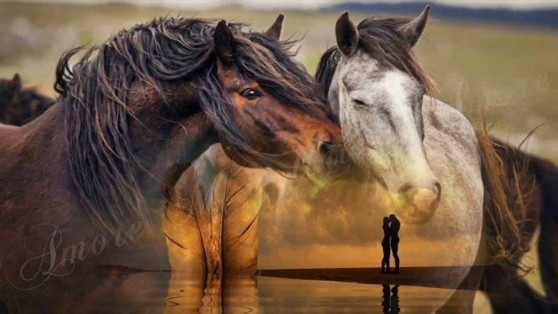 Leo Rojas - Тhe Last of the Mohicans- Amore Mio Unico Amore-