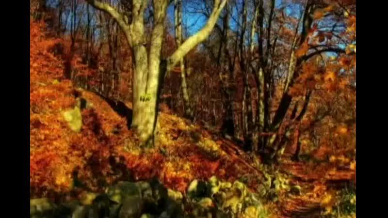 Осеньрыжаяподружка...АллаПугачева..mp4