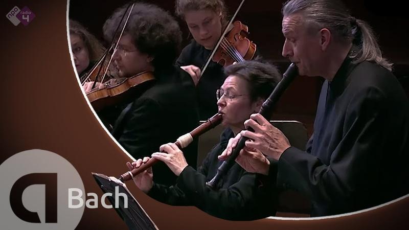 Bach Brandenburg Concerto No.4, BWV 1049 - Concerto Köln, Cordula Breuer and Wolfgang Dey - Live HD