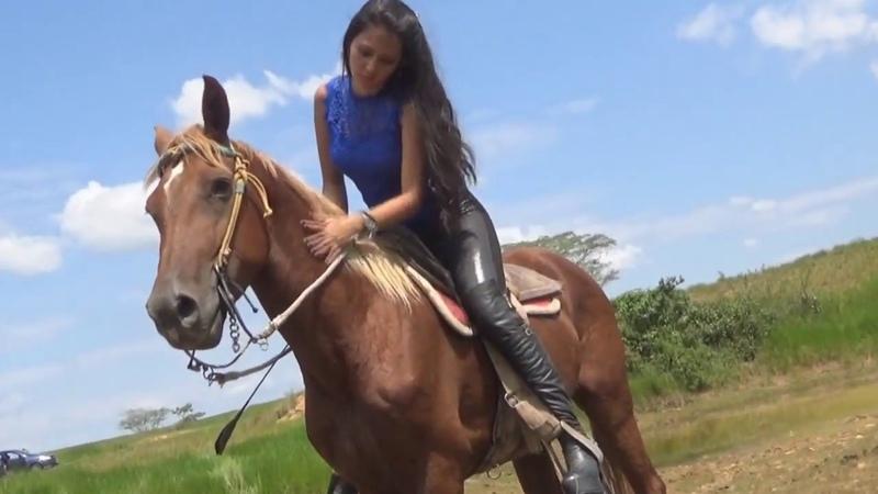 Ponyboy RWM E250