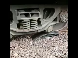 Когда поезд сошёл с рельсов rjulf gjtpl cji`k c htkmcjd