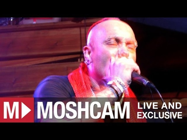 The Exploited Sex and Violence Live in Sydney Moshcam