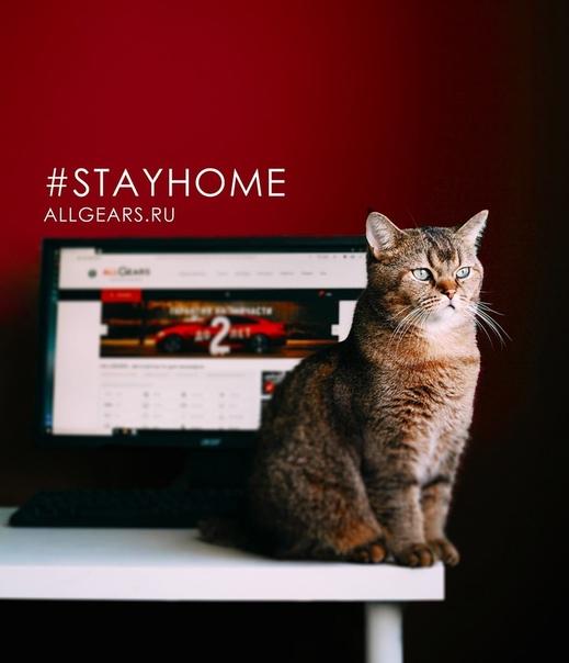 Не смотря на то, что мы работаем без перерыва, мы просим наших клиентов оставаться дома!