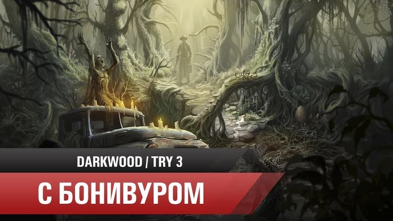 🌚Бог любит троицу   Прохождение Darkwood/Третья попытка [Часть 1] » Freewka.com - Смотреть онлайн в хорощем качестве