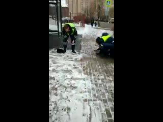 Кадры с места нападения пешехода на сотрудника ГИБДД в Мытищах