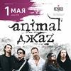 26 ноября | Animal ДжаZ - Время любить | Минск