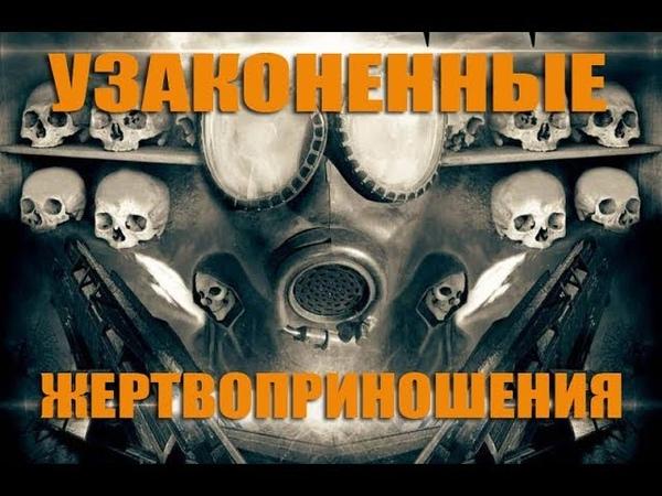 Узаконенные жертвоприношения. Фильм Вячеслава Негребы