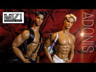 Mizi Doll: Adonis Fashion Male Dolls