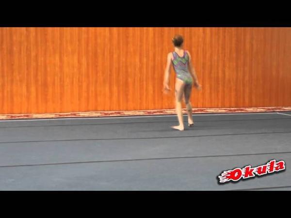 Соревнования по спортивной гимнастике Гимнастике в СК ЗАРЯ,12.02.2016 г.