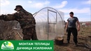 Монтаж Теплиц - Дачница ОПТИМА и Дачница ГАРАНТ