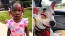 Собака толкала ребёнка когда отец подбежал он сразу все понял и немедленно начал действовать