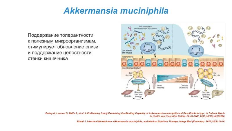 Микробиом и долголетие Александр Коляда