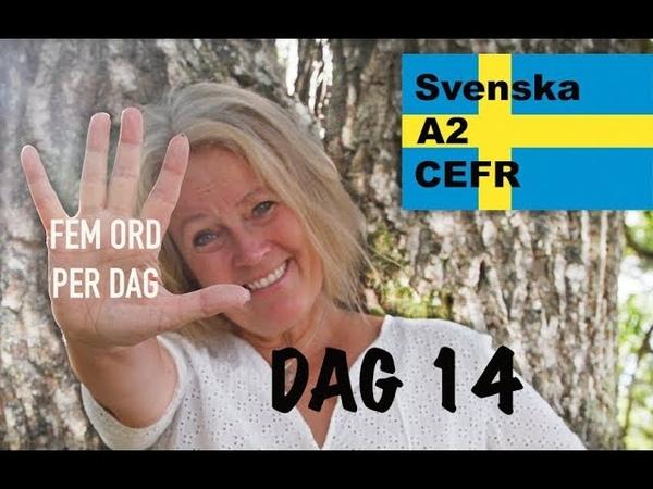 Lär dig svenska Dag 14 Fem ord per dag A2 CEFR Learn Swedish 72 undertexter