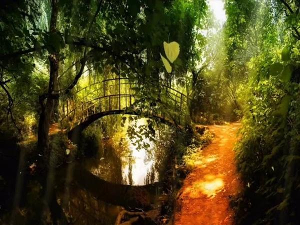 Я к тебе прикоснусь душой.../автор слов Радуга Чудес, музыка Yiruma Passing by/