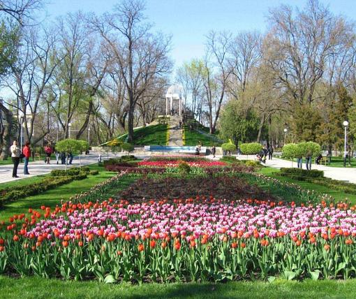 фото краснодара весной взрослый