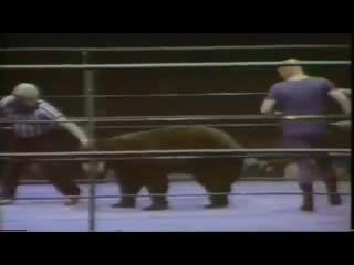 Victor the wrestling bear vs gary hart