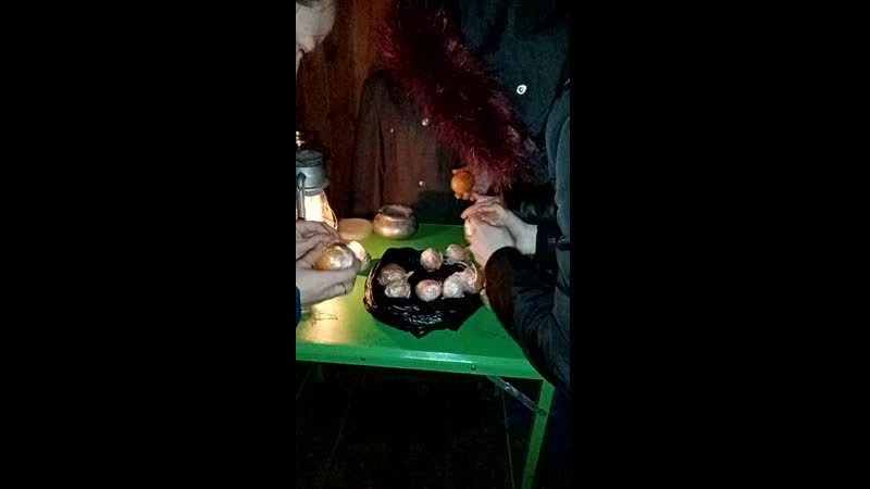 Дед МороZ и его Олени