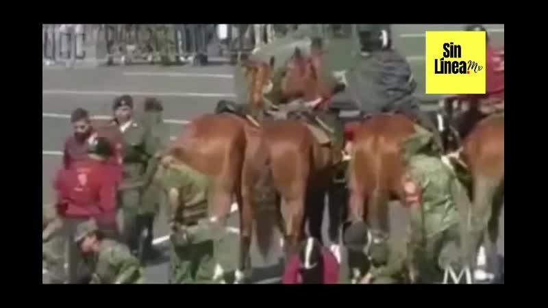 🥴 ComandanteBorolas recibe baño de estiercol 🖕🏼💩 en su último 20 de Noviembre