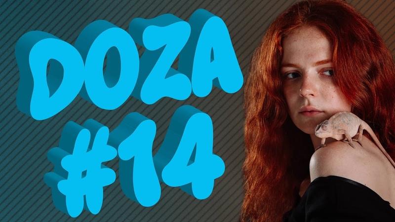 COUB DOZA 14   Лучшие приколы 2019   Best Cube   Смешные видео   Доза Смеха