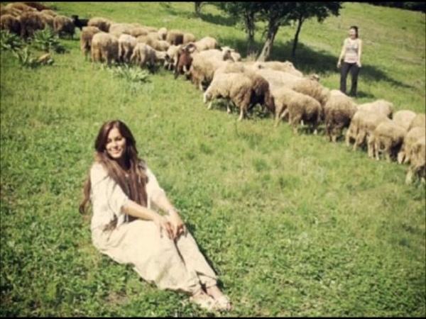 Narodna pesma cuvam ovce kraj zelene jove