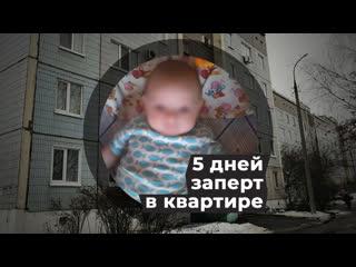 В Ижевске ребёнок 5 дней выживал рядом с телом матери