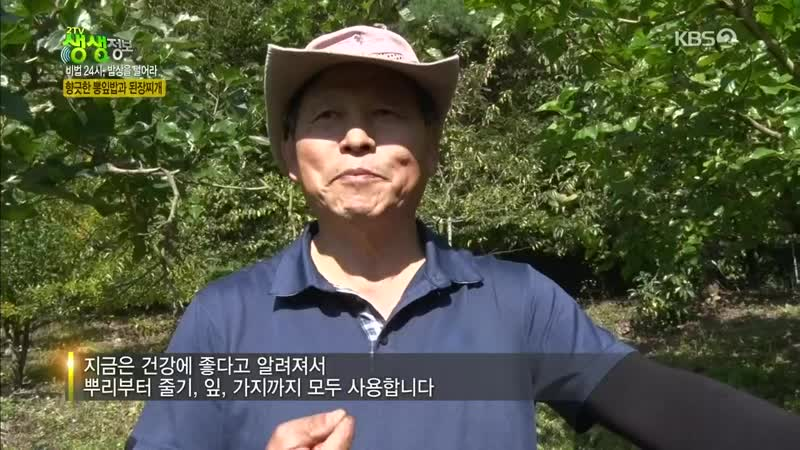 2TV 생생정보 1117회 (수) 2019-10-16 저녁6시30분