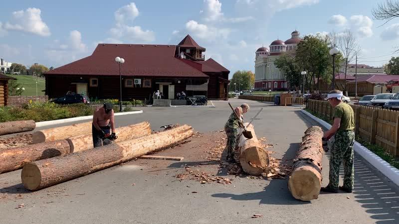 Stihl ms250 на фестивале Поющее дерево Инструмент Центр 🔥