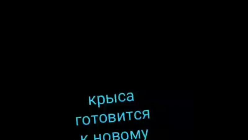 VID_21561209_141228_631.mp4