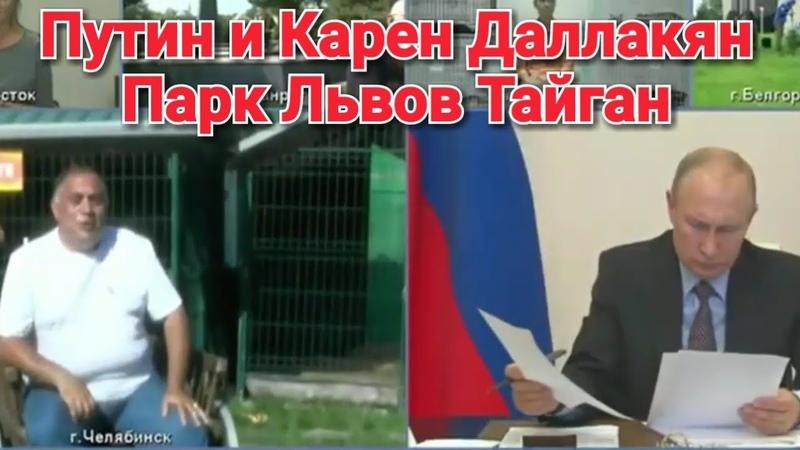 🦁 Путин. Карен Даллакян. Львёнок СИМБА. Парк Львов Тайган. Тигр Жорик.