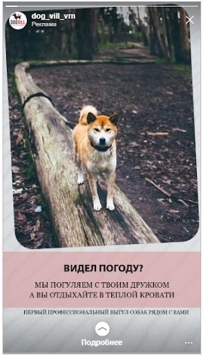 Кейс: продвижение стартапа по выгулу собак, изображение №11