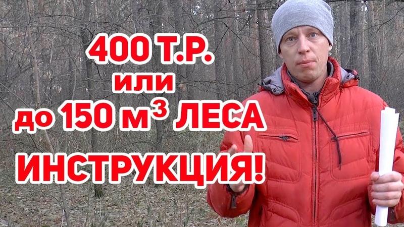 50 кубов леса БЕСПЛАТНО Как недорого ПОСТРОИТЬ ДОМ
