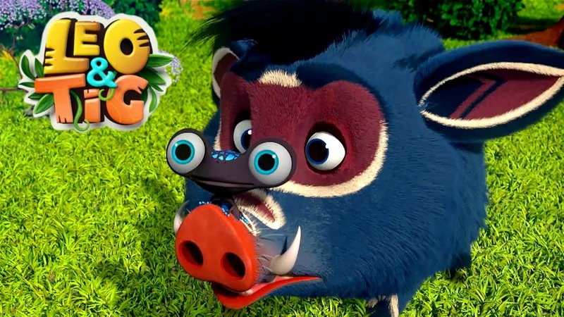 LEO and TIG 🦁 NEW 🐯 Episode 21 Bad Luck ❤️ Moolt Kids Toons Happy Bear