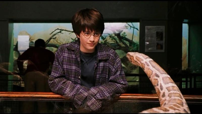 Гарри Разговаривает Со ЗМЕЁЙ Сцена в Зоопарке Гарри Поттер и философский камень 2001 Момент HD