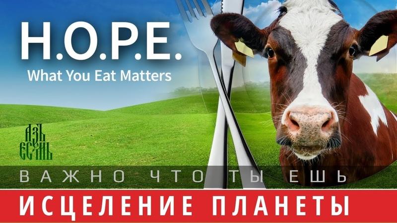 ИСЦЕЛЕНИЕ ПЛАНЕТЫ. Важно, что ты ешь ( фильм H.O.P.E. What You Eat Matters, 2018 на русском)