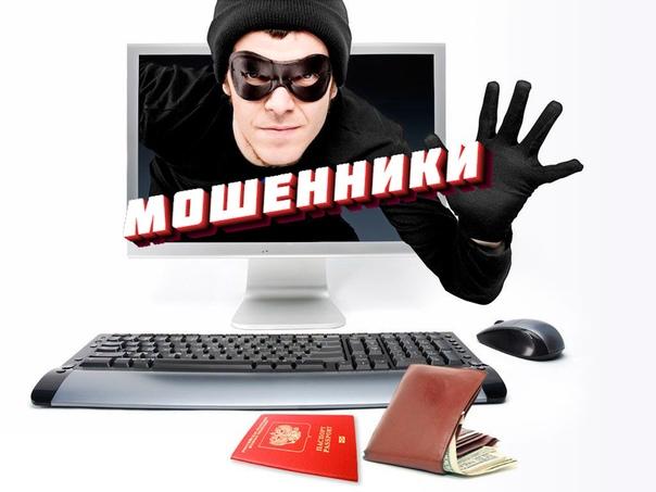 уголовная статья за мошенничество в интернете