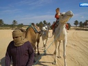По секрету всему свету Эфир от 01 02 2020 Пустыня Сахара