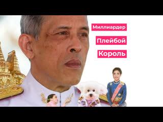Король Таиланда и его любимые собаки и женщины