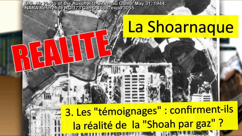 La Shoarnaque. 3. Les «témoignages» confirment-ils la réalité de la «Shoah par gaz»