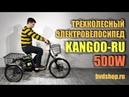 Трехколесный электровелосипед (трицикл) E-MOTIONS Kangoo-RU 500W - обзор