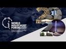 Эти видео ролики посмотрели главы 50 государств в Израиле на форуме памяти Холокоста