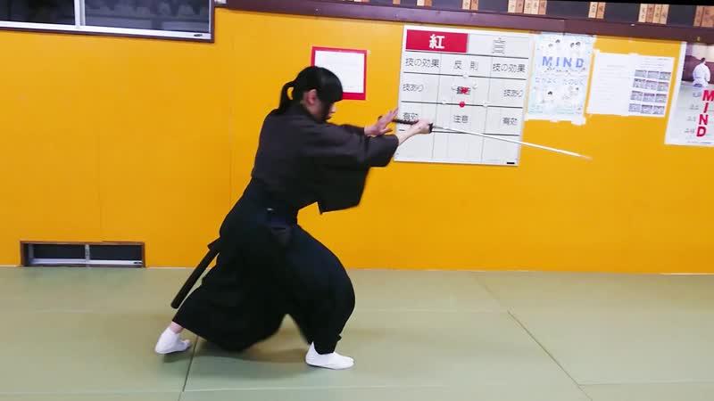 Tenshin Ryu Hyoho - Tanako-Zuki 掌突