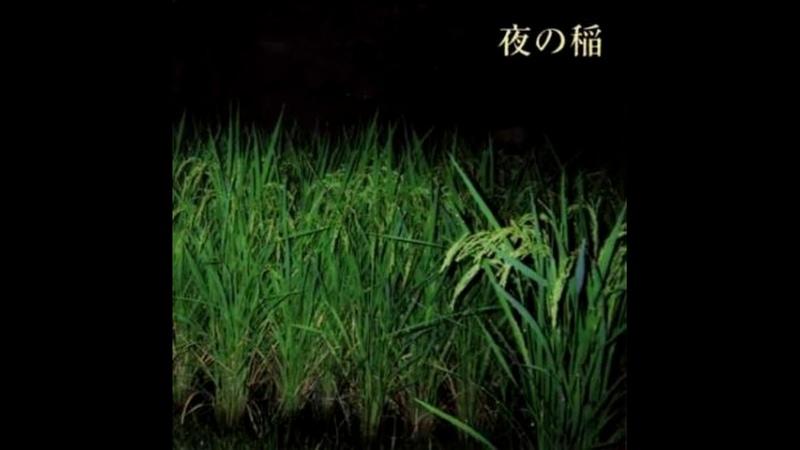 Reiko Kudo 工藤礼子  夜の稲 Rice Field Silently Riping In The Night 2000 FULL ALBUM
