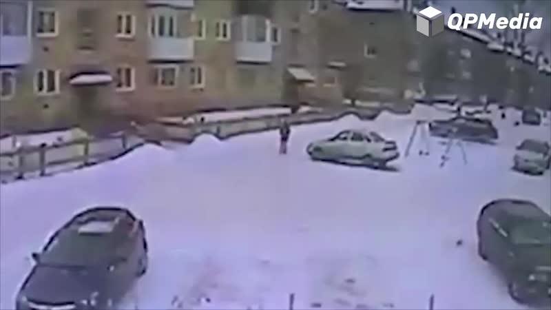 бездомные собаки напали на ребенка на Урале