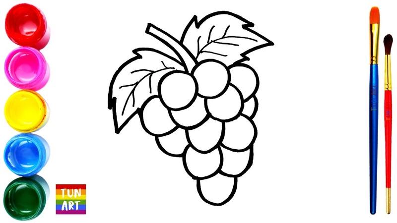 Draw and Color Grapes Cara Menggambar dan Mewarnai Anggur untuk Anak anak Vẽ và Tô Màu Trùm Nho
