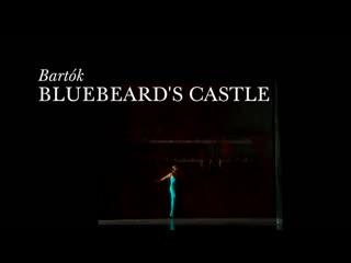 "Bartok ""bluebeard's castle""najda michaelmikhail petrenkovalery gergievmet opera 2015"